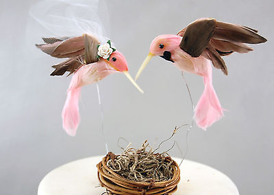 Amazon Bird Cake Topper